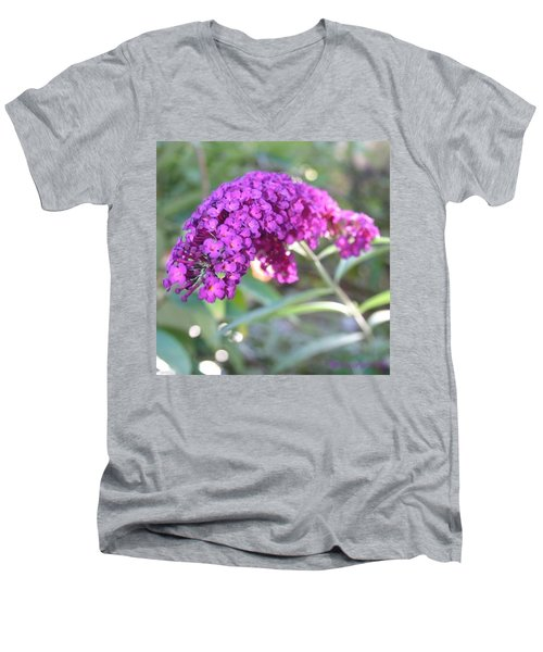 Good Morning Purple Butterfly Bush Men's V-Neck T-Shirt
