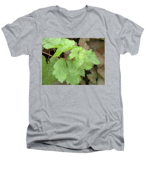 Men's V-Neck T-Shirt featuring the photograph Grapevine by Laurel Powell