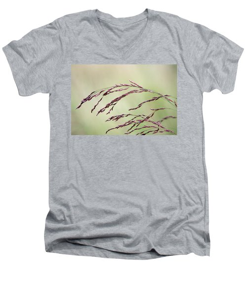 Grass Seed Men's V-Neck T-Shirt