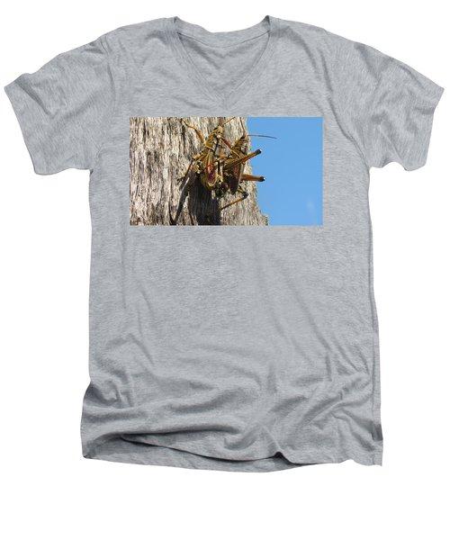 Grasshoppers Men's V-Neck T-Shirt