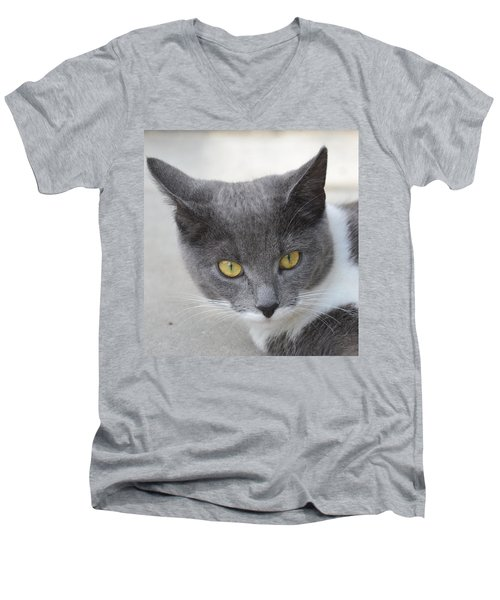 Gray Cat - Listening Men's V-Neck T-Shirt