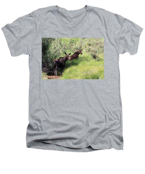 Grazing Along Men's V-Neck T-Shirt