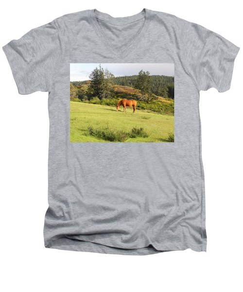 Men's V-Neck T-Shirt featuring the photograph Grazing by Cheryl Hoyle