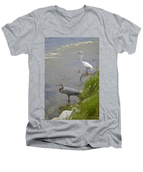 Great Blue And White Egrets Men's V-Neck T-Shirt