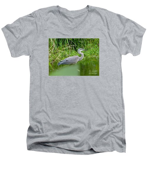 Men's V-Neck T-Shirt featuring the photograph Great Blue Heron  by Susan Garren