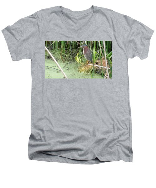 Men's V-Neck T-Shirt featuring the pyrography Green Heron by Ron Davidson