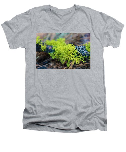 Green Lichen Men's V-Neck T-Shirt