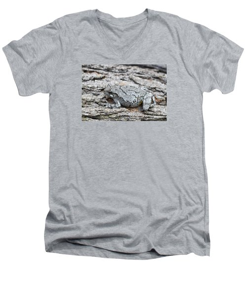 Men's V-Neck T-Shirt featuring the photograph Cope's Gray Tree Frog by Judy Whitton