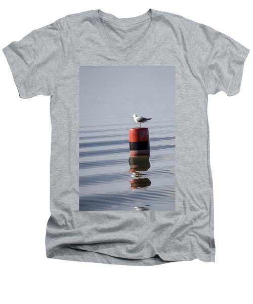 Gull Men's V-Neck T-Shirt