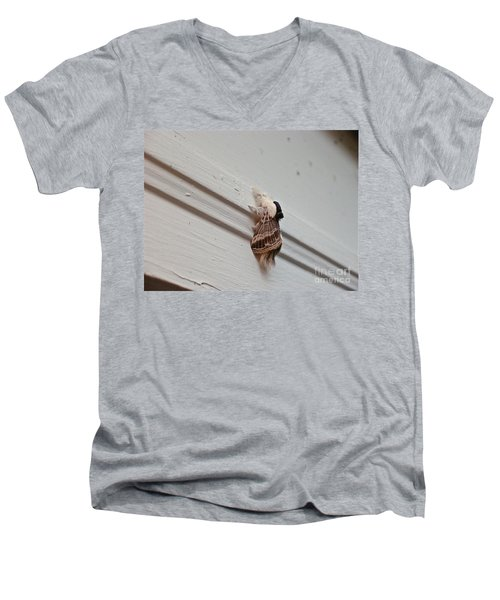 Hairy Russian Moth Men's V-Neck T-Shirt
