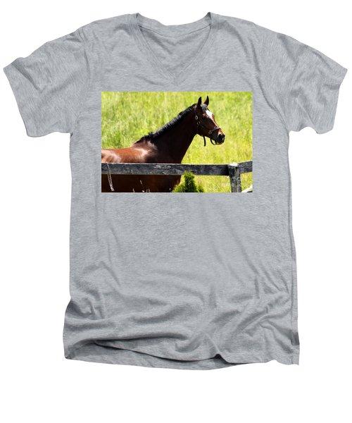 Handsom Horse Men's V-Neck T-Shirt