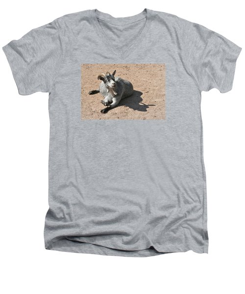 Men's V-Neck T-Shirt featuring the photograph Happy Goat by Dreamland Media