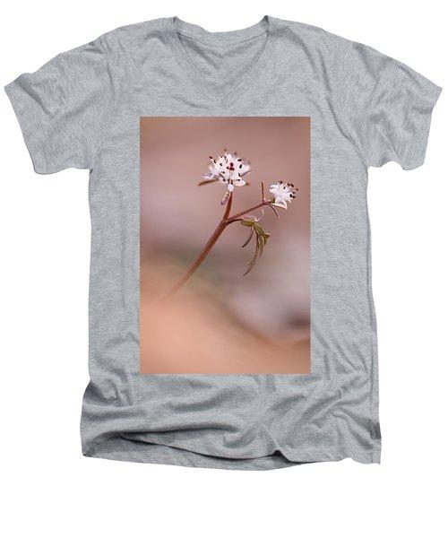 Harbinger Of Spring Men's V-Neck T-Shirt