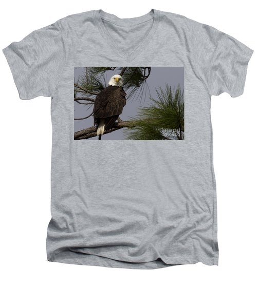 Harriet The Bald Eagle Men's V-Neck T-Shirt