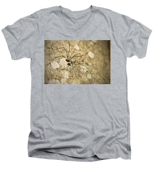 Men's V-Neck T-Shirt featuring the photograph Harvestman Spider by Chevy Fleet