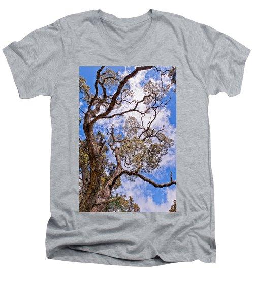 Hawaiian Sky Men's V-Neck T-Shirt
