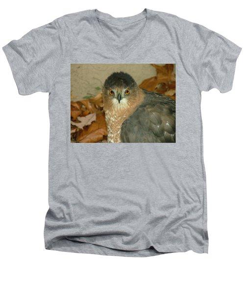 Hawk Eyes Men's V-Neck T-Shirt