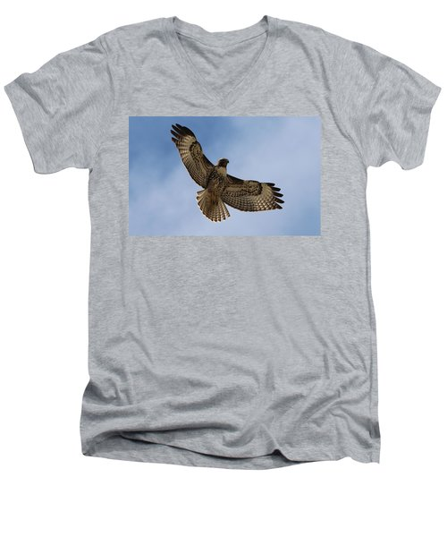 Hawk In Flight  Men's V-Neck T-Shirt