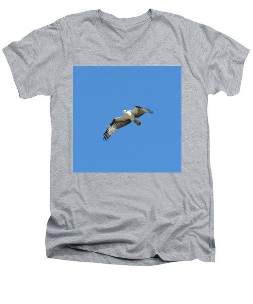 Hawk In Flight Men's V-Neck T-Shirt