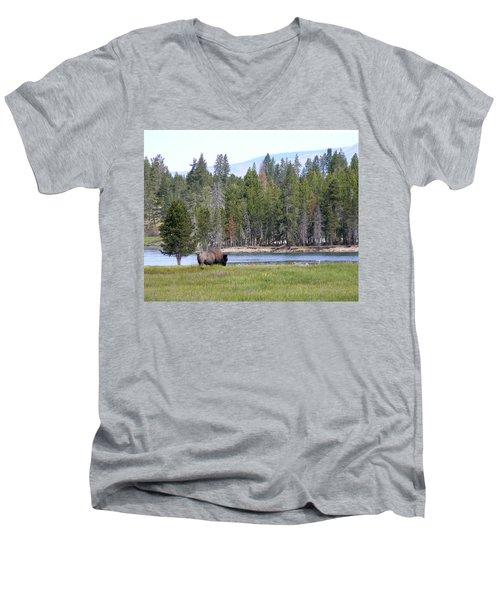 Hayden Valley Bison Men's V-Neck T-Shirt by Laurel Powell