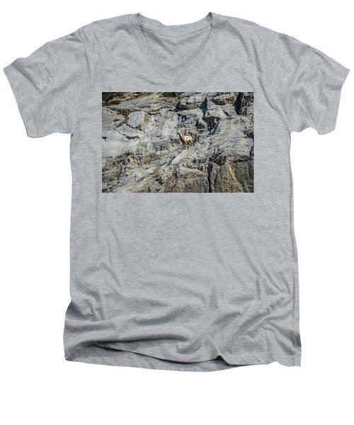Big Horn Sheep Coming Down The Mountain  Men's V-Neck T-Shirt