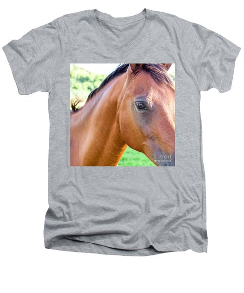 Men's V-Neck T-Shirt featuring the photograph Hello Beauty by Roselynne Broussard