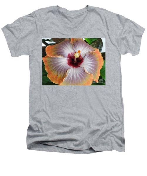 Hibiscus  Men's V-Neck T-Shirt by Jennifer Wheatley Wolf
