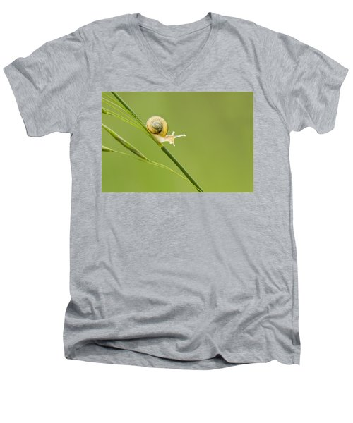 High Speed Snail Men's V-Neck T-Shirt