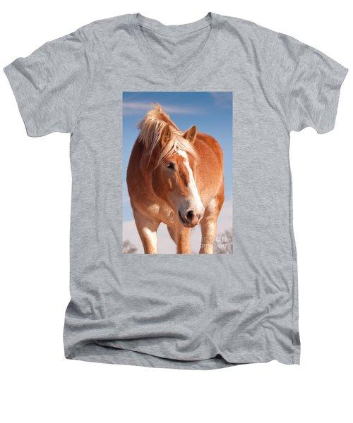 Hanks Sweetness Men's V-Neck T-Shirt