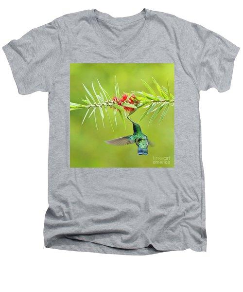 Honey Sucking Men's V-Neck T-Shirt