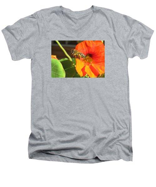 Honeybee Leaving Nasturtium With A Full Pollen Basket Men's V-Neck T-Shirt by Lucinda VanVleck