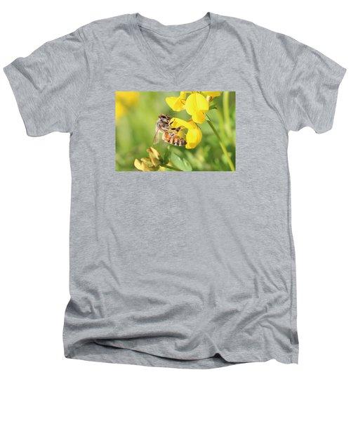 honeybee on Birdsfool Trefoil Men's V-Neck T-Shirt by Lucinda VanVleck