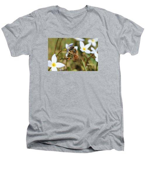 Honeybee On Bluet Men's V-Neck T-Shirt by Lucinda VanVleck