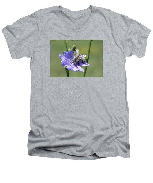 honeybee on Chickory Men's V-Neck T-Shirt