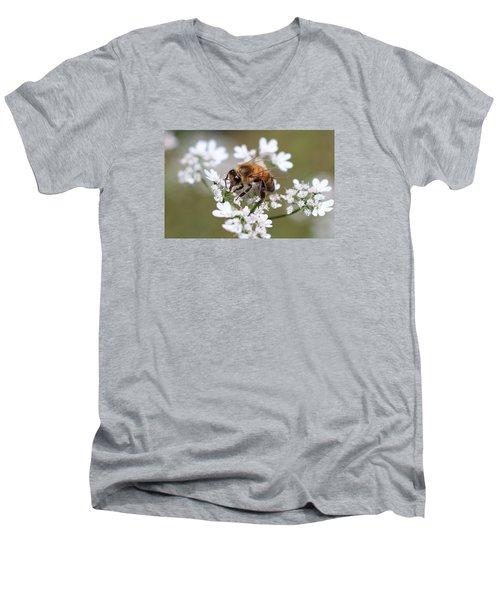 Honeybee On Cilantro Men's V-Neck T-Shirt by Lucinda VanVleck