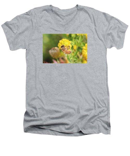 Honeybee On Hop Clover Men's V-Neck T-Shirt by Lucinda VanVleck