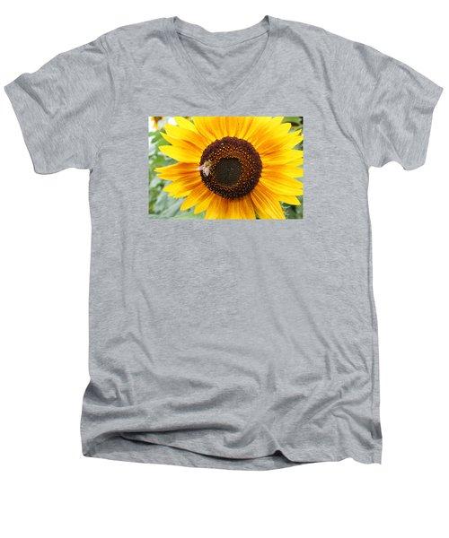 Honeybee On Small Sunflower Men's V-Neck T-Shirt by Lucinda VanVleck