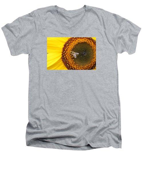 Honeybee On Sunflower Men's V-Neck T-Shirt by Lucinda VanVleck