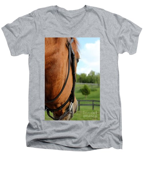 Horse View Men's V-Neck T-Shirt