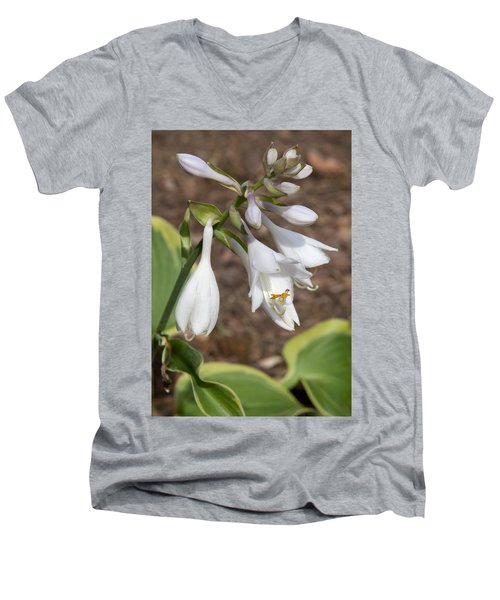 Hosta Men's V-Neck T-Shirt
