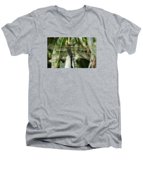 Huge Dragon-fly In Detail. Men's V-Neck T-Shirt