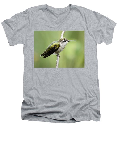Hummingbird 3 Men's V-Neck T-Shirt