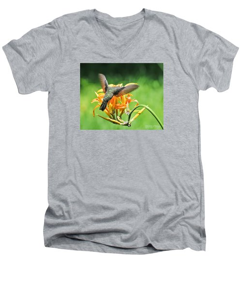 Men's V-Neck T-Shirt featuring the photograph Hummingbird At Lunchtime by David Perry Lawrence