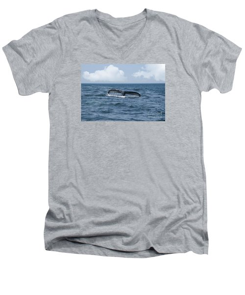 Humpback Whale Fin Men's V-Neck T-Shirt