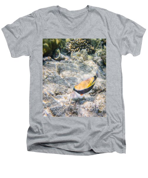 Humuhumunukunukuapua'a Men's V-Neck T-Shirt by Denise Bird