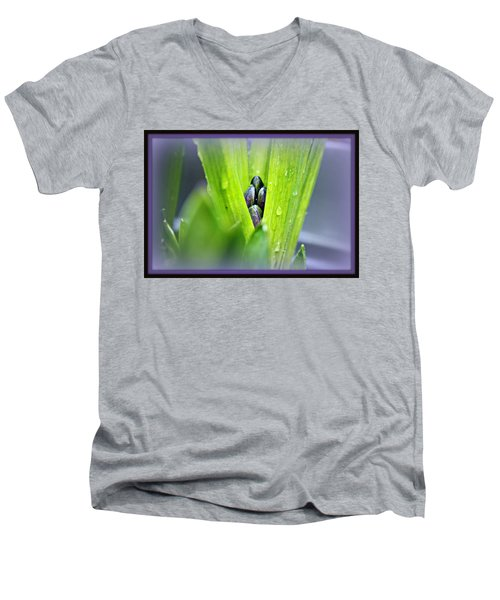 Hyacinth For Micah Men's V-Neck T-Shirt by Katie Wing Vigil