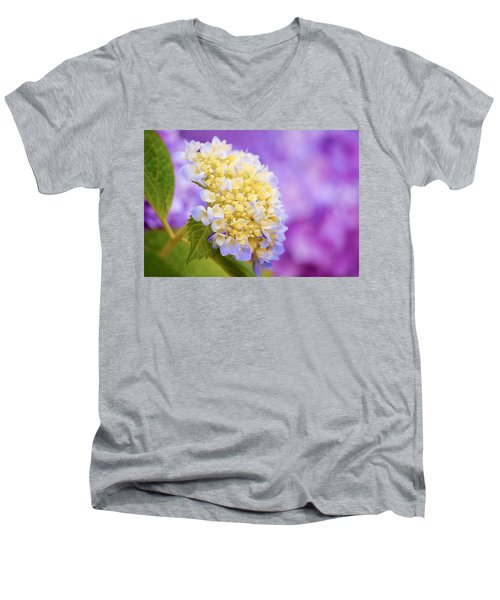 Hydrangea On Purple Men's V-Neck T-Shirt