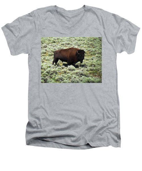 I Am The King Of This Meadow Men's V-Neck T-Shirt