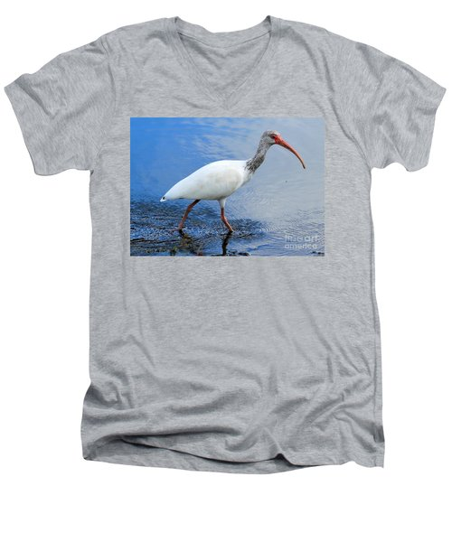 Ibis Visitor Men's V-Neck T-Shirt by Carol Groenen