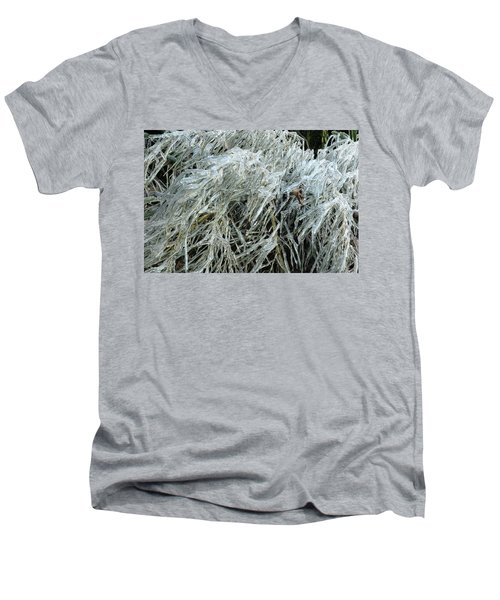 Ice On Bamboo Leaves Men's V-Neck T-Shirt